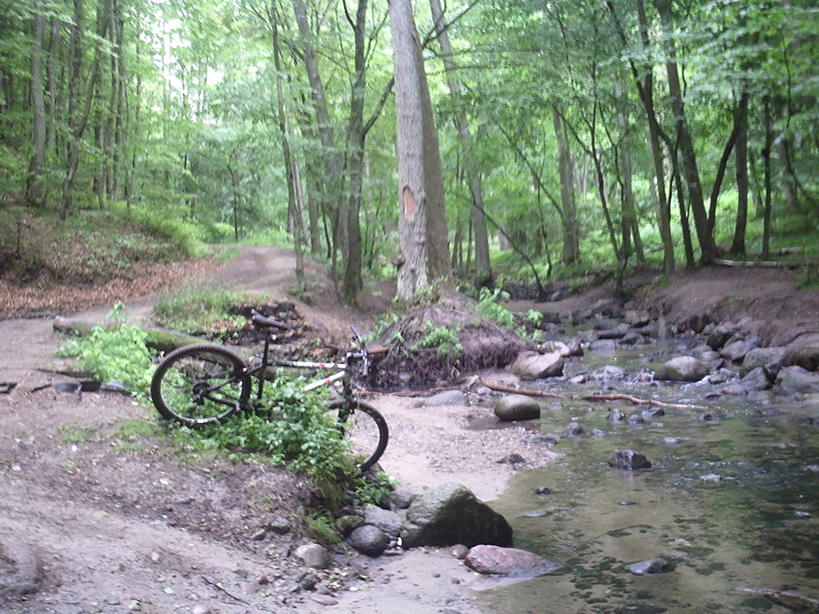 Zdjęcie roweru w lesie